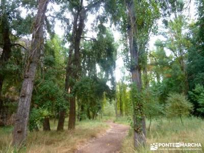 Hoces Río Duratón - Villa Sepúlveda; puente senderismo;viajes organizados